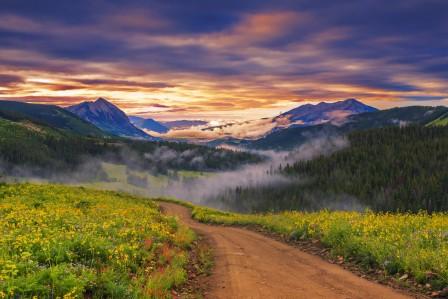 自然日落 路 鲜花 草地 4K风景图片