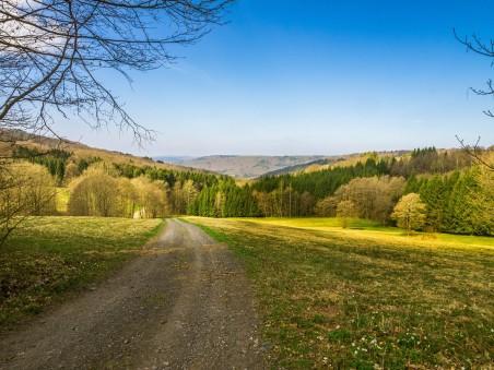 绿色农场4k风景图片