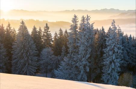冬季风景4K图片