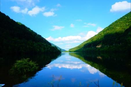 罗马尼亚 锡比乌 湖 树 森林 4K风景高端电脑桌面壁纸
