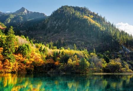 秋天 森林 树木 九寨沟风景4K高端电脑桌面壁纸