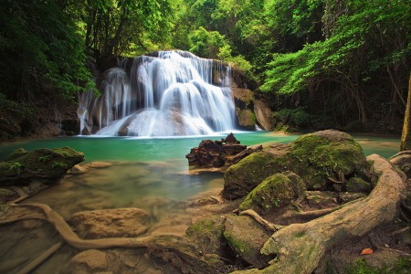 森林,树木,石头,苔藓,自然瀑布风景高清图片