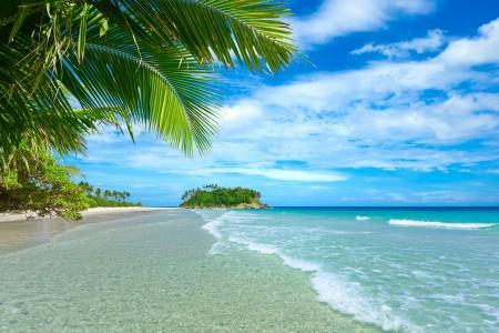 小岛,大海,沙滩,棕榈树,天空,夏天,自然风景图片