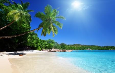 海边自然风景,天空,云,沙滩,椰树,棕榈树,高清海岸图片