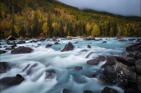 山 树林 小溪 流水 4k风景图片