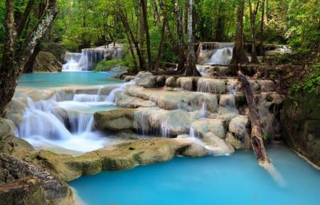 森林 树木 溪流 瀑布 岩石 4k风景高端电脑桌面壁纸