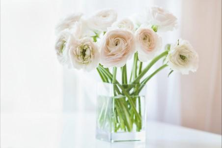花,花瓶,窗口图片