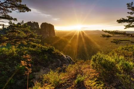 森林 树木 山 岩石 悬崖 瑞士 阿尔卑斯山 太阳的光芒 4k风景图片