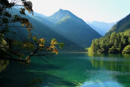 九寨沟自然风景湖水树林高清图片