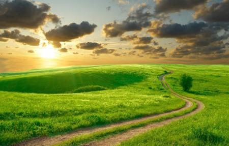 美丽的绿色草地 丘陵 道路 云海 日出 风景4k高端电脑桌面壁纸