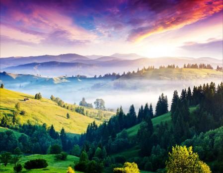 山 树林 天空 云 4k风景高清大图片