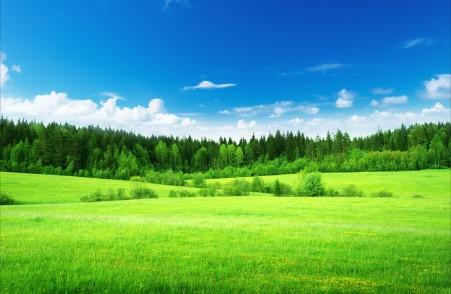 蓝天白云,草地,绿色自然风景高清图片