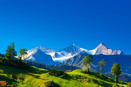 瑞士阿尔卑斯山,山,房子,蓝色天空,风景图片