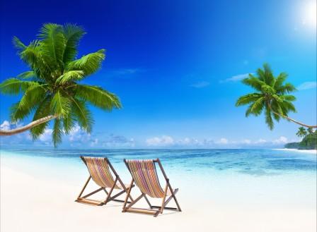 海岸,蓝色大海,翡翠,棕榈树,椅子,美丽的海洋风景图片