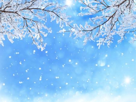 冬天,雪,树枝,雪花,天空背景图片