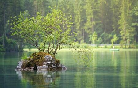 森林湖绿色护眼4k高端电脑桌面壁纸