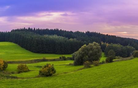 阿尔卑斯山风景 草地 山地 森林 3440x1440高端电脑桌面壁纸