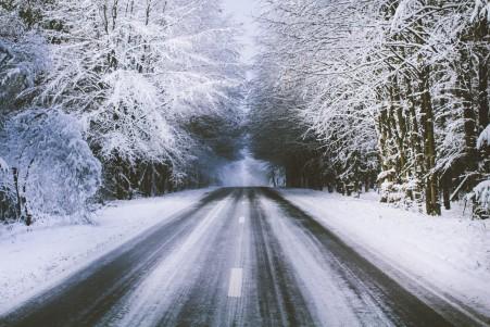雪景 树 道路 5k风景高端电脑桌面壁纸