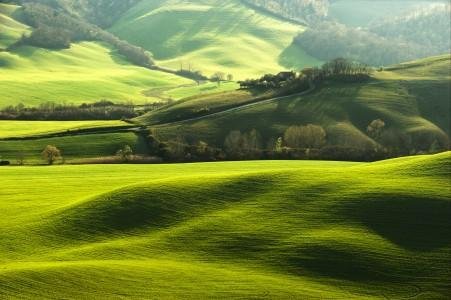 农场 意大利 托斯卡纳区 绿色领域 草地 爬坡道 田园 树 风景 路 4k高端电脑桌面壁纸