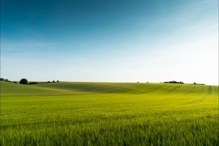 美丽的绿野风光4k风景高清高端电脑桌面壁纸