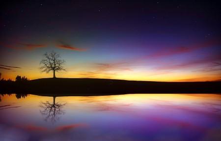 树 湖 黄昏 日落 秋季 云 傍晚的天空4k风景超高清壁纸精选3840x2160