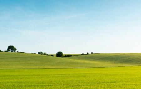 美丽的绿色麦田风景4k高端电脑桌面壁纸3840x2160