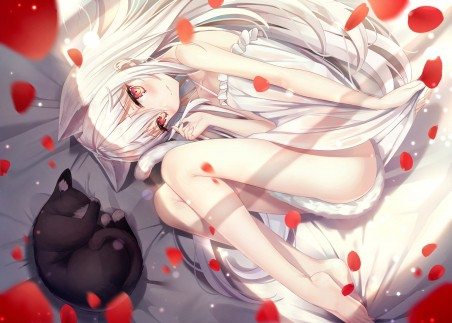 白色长发少女 黑猫 花瓣 4k动漫超高清壁纸推荐