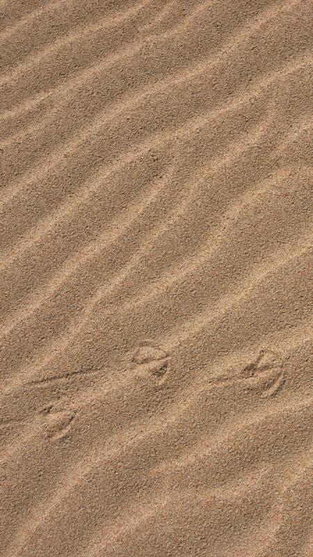 沙子4K高清手机壁纸推荐