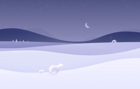 简约冬天风景 小熊 夜晚5k壁纸极品壁纸推荐