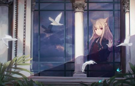 可爱猫耳女孩 梦想 白色的羽毛 4k动漫壁纸百变桌面精选3840x2160