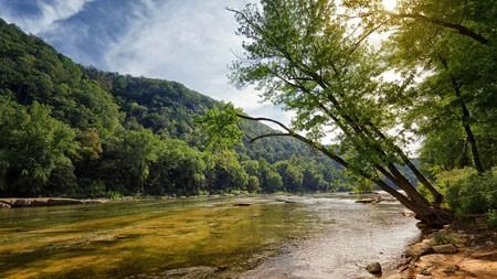 森林,山,河,2022年,自然风光,照片高端桌面精选 3840x2160