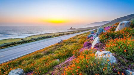 迷人,海岸,道路,花卉,风景高端桌面精选 3840x2160
