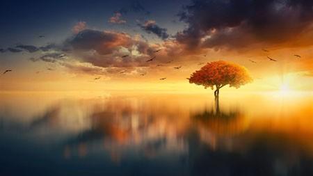 平静的水,2022,早晨,风景,照片高端桌面精选 3840x2160