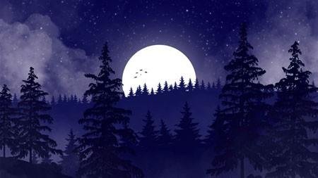 和平之夜,丛林,2021,万圣节,5K,海报高端桌面精选 5120x2880