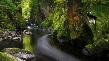 森林,河,威尔士,英国,2021年,春天,5K,高清,照片百变桌面精选 5120x2880