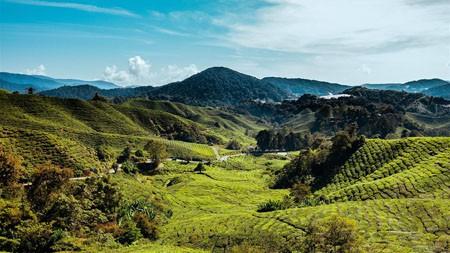 马来西亚,金马仑高原,丘陵,草地高端桌面精选 3840x2160