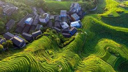 中国,桂林龙脊梯田,2021年,旅行,5K,摄影高端桌面精选 3840x2160
