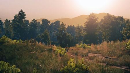 秋天,丛林,景观,阳光,iMac,Retina,4K,超高清高端桌面精选 3840x2160