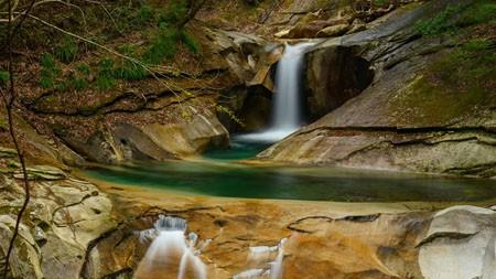 丛林,河溪,2022,自然风光,照片高端桌面精选 3840x2160