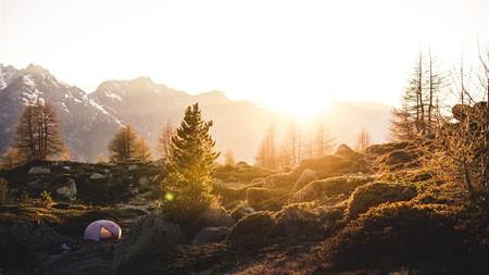 秋天,丛林,高山,早上,阳光高端桌面精选 3840x2160