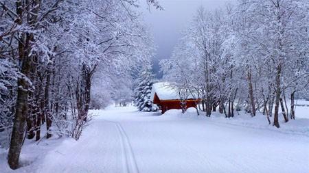 冬季,路,房子,雪,2022,自然,风景,照片高端桌面精选 3840x2160
