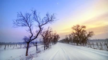 大雪覆盖,寒冷的冬天,道路,风景高端桌面精选 3840x2160
