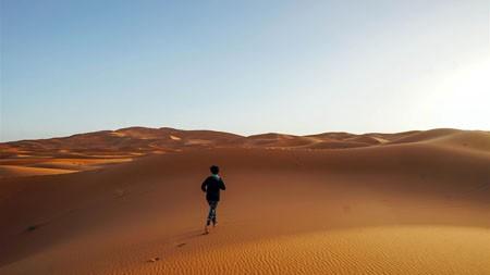 非洲,撒哈拉,沙丘,草地,跑高端桌面精选 3840x2160
