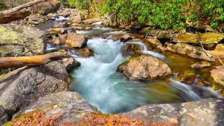 洪水,森林,河流,景观,4K高端桌面精选 3840x2160