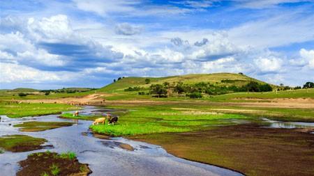 草原,母牛,河,蓝天,白色云彩极品壁纸精选 3840x2160