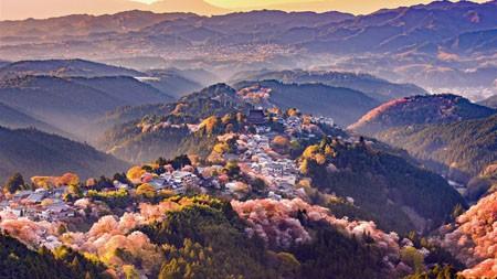 日本奈良县吉野山,2021,风景,高清,照片高端桌面精选 3840x2160