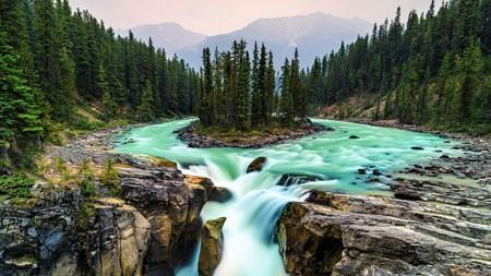 加拿大,贾斯珀国家公园,丛林,瀑布高端桌面精选 3840x2160