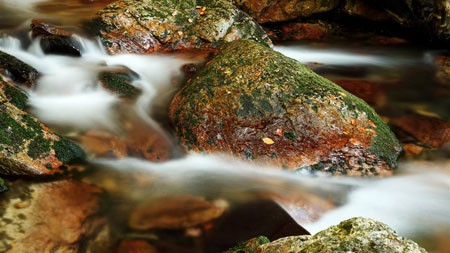 丛林,白色的小溪,河,青苔,岩石高端桌面精选 3840x2160