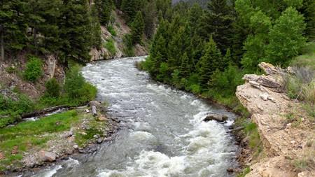 河道,森林,2022,自然,风景,照片高端桌面精选 3840x2160