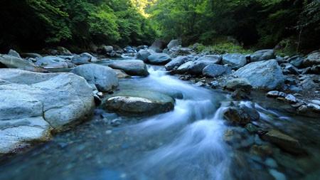 绿色,森林,河流,岩石,早上极品壁纸精选 3840x2160